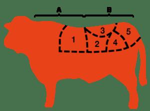 Cuales son los cortes de carne argentina
