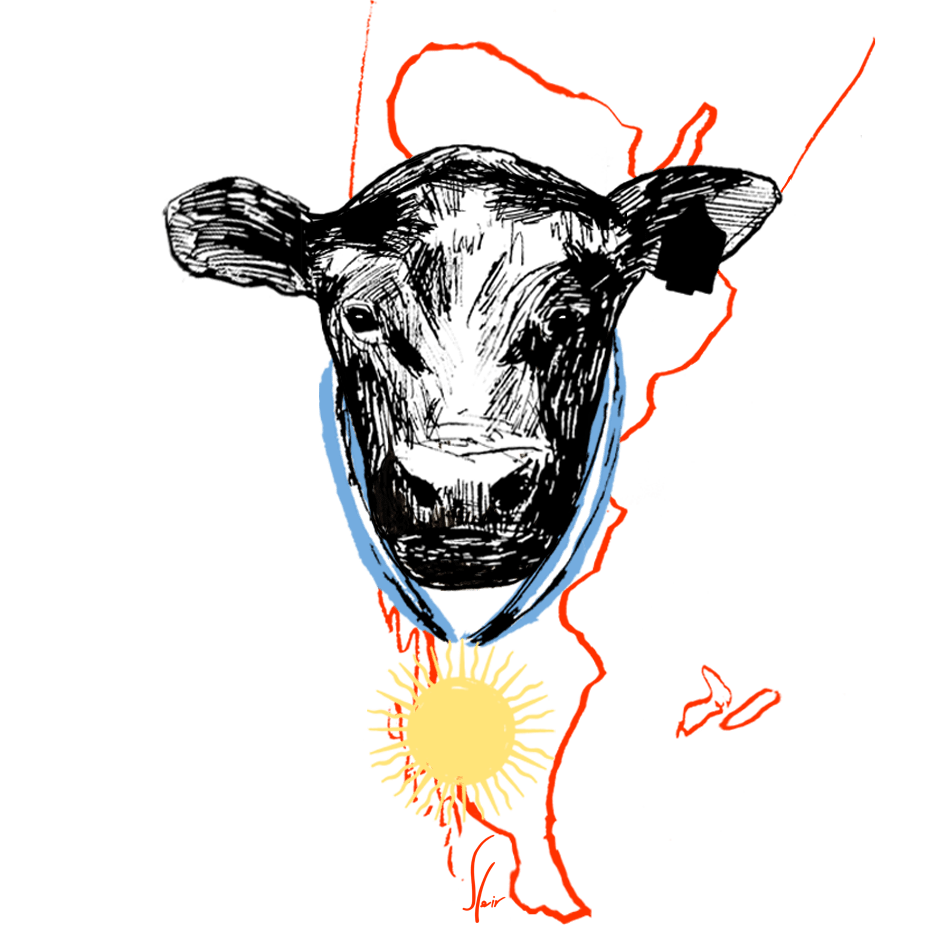 Euro Campa distribuidor carne argentina